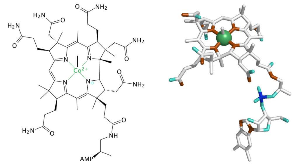needle free methyl b12